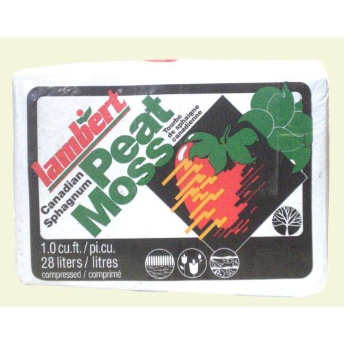 Medium Of Peat Moss Home Depot