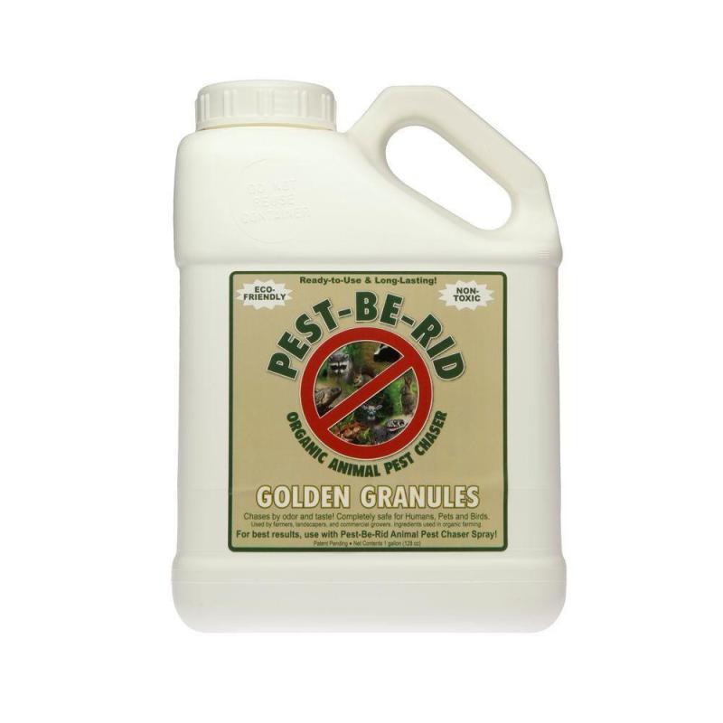 Large Of Castor Oil Granules