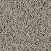 Trendy Threads II - Color Lakeview Texture 12 ft. Carpet ...
