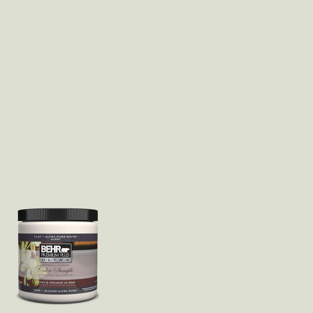 White Sage Paint Behr Premium Plus Ultra 8 Oz Ul210 10 Whitened Sage Matte Interior Exterior Paint And Primer In One Sample
