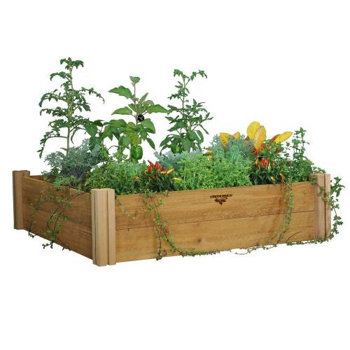 Medium Crop Of Home Depot Vegetable Garden Box