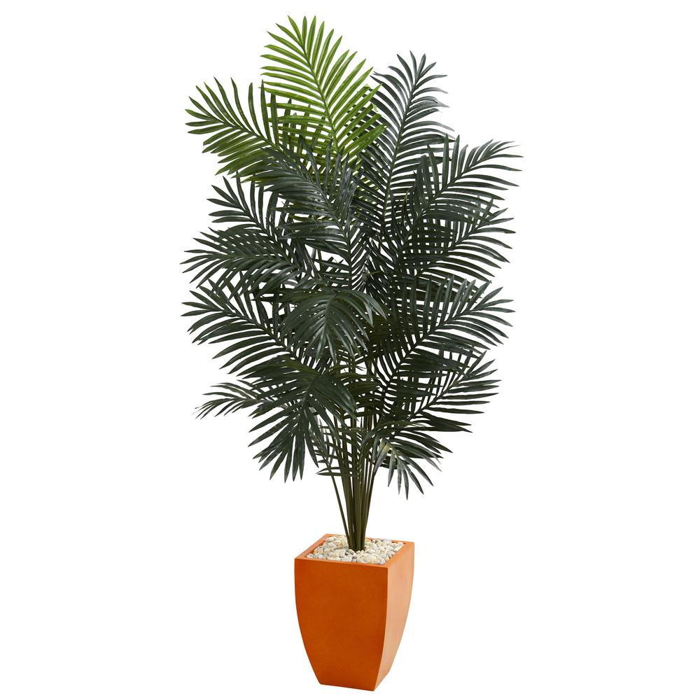 Home Depot Palm Trees Romano 5 Ft Tropical Palm Tree 50 10004 R The Home Depot