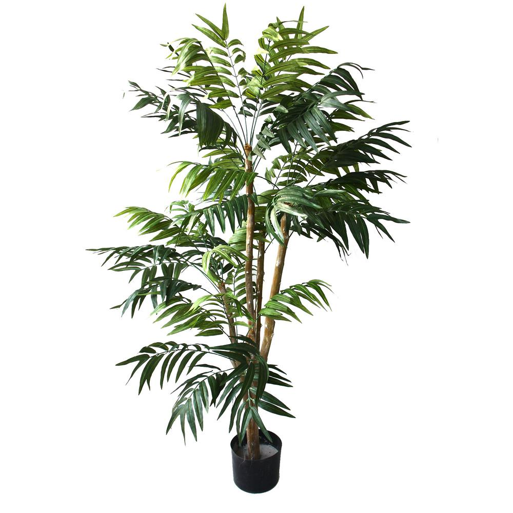 Home Depot Palm Trees 5 Ft Tropical Palm Tree