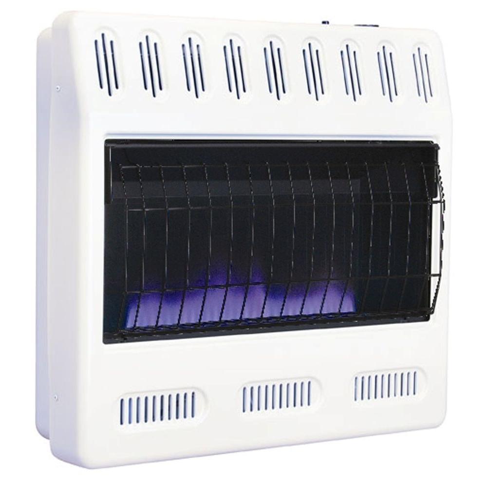 Williams 30,000 BTU Blue Flame Vent
