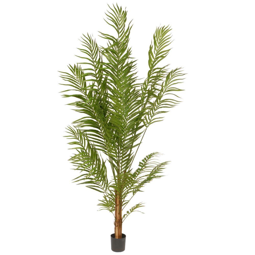 Home Depot Palm Trees National Tree Company 5 8 Ft Deluxe Areca Potted Palm Tree