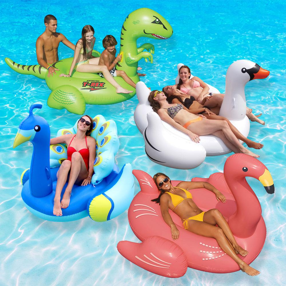 Flamingo Pool Dates Swimline Animal Kingdom Swan Flamingo Peacock And T Rex Extra Large Swimming Pool Float Combo Value Pack