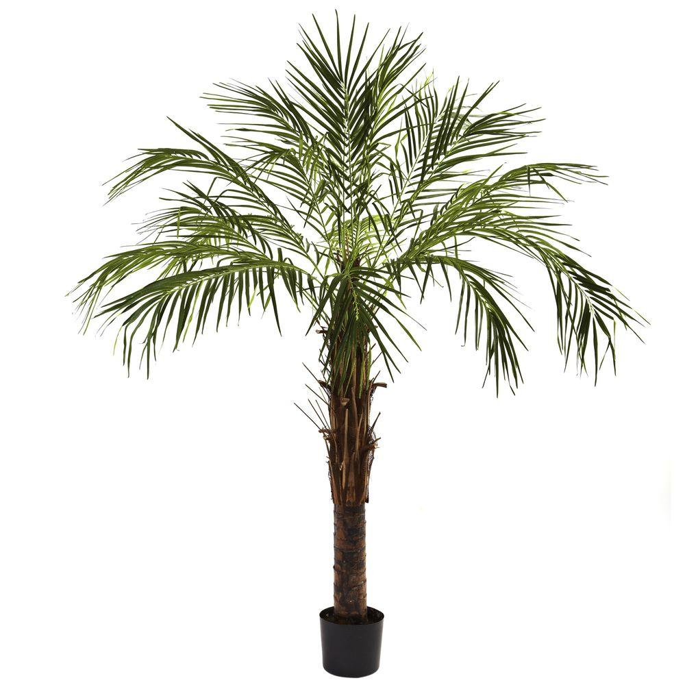 Home Depot Palm Trees Nearly Natural 6 Ft Robellini Palm Tree