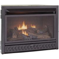 ProCom Gas Fireplace Insert Duel Fuel Technology  26,000 ...