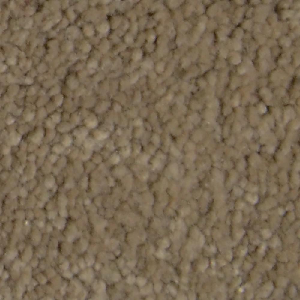 Platinum Plus Carpet Sample Gemstone Ii Color Spencer