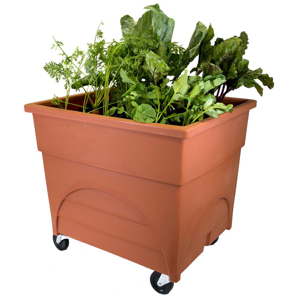 Marvellous Terra Cottawith Casters Emsco Pots Planters Garden Center Home Depot Home Depot Vegetable Garden Box City Pickers Root Picker Raised Bed Root Vegetable Grow Box garden Home Depot Vegetable Garden Box