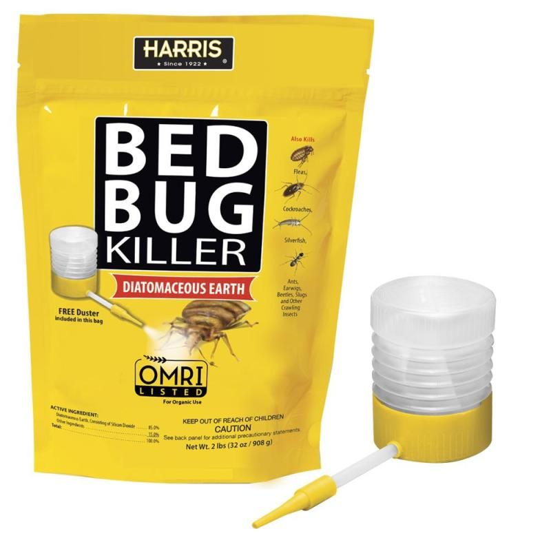 Large Of Does Diatomaceous Earth Kill Ants