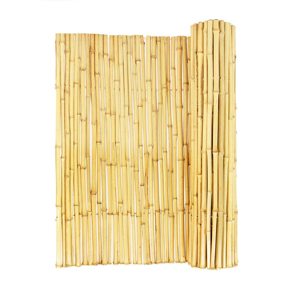 Backyard Fence Backyard X Scapes 3 4 In D X 6 Ft H X 8 Ft Natural Rolled Bamboo Fence