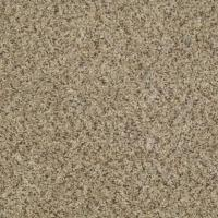 Gutsy - Color Dynamic Twist 12 ft. Carpet-HDD4848122 - The ...
