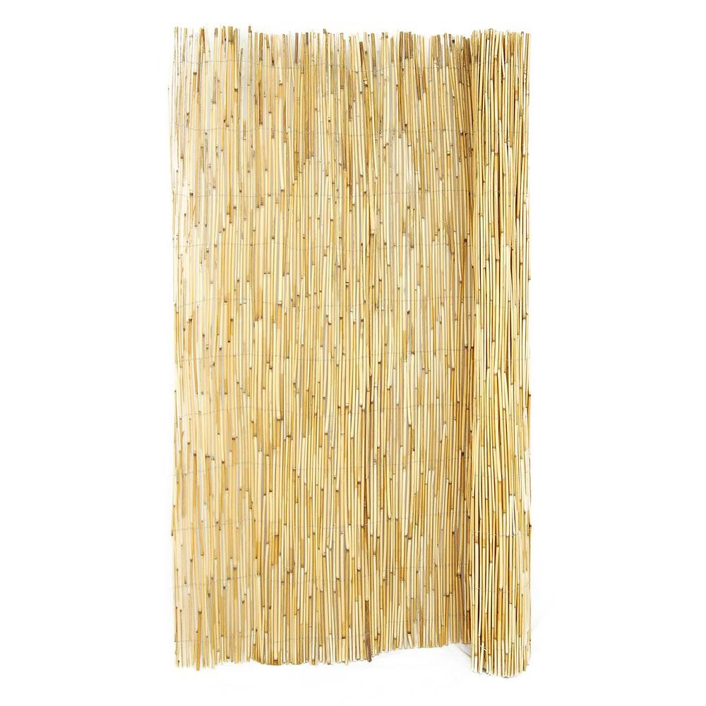 Bamboo Fence Canada Backyard X Scapes 6 Ft H X 16 Ft L Reed Fencing