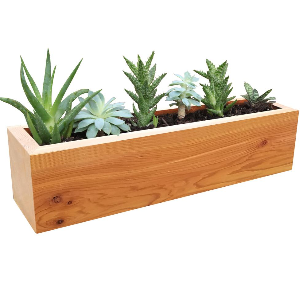 Gronomics 4 in. x 4 in. x 16 in. Succulent Planter Wood