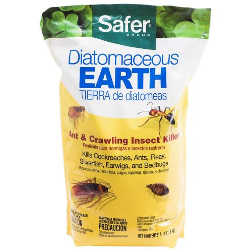Medium Of Does Diatomaceous Earth Kill Ants