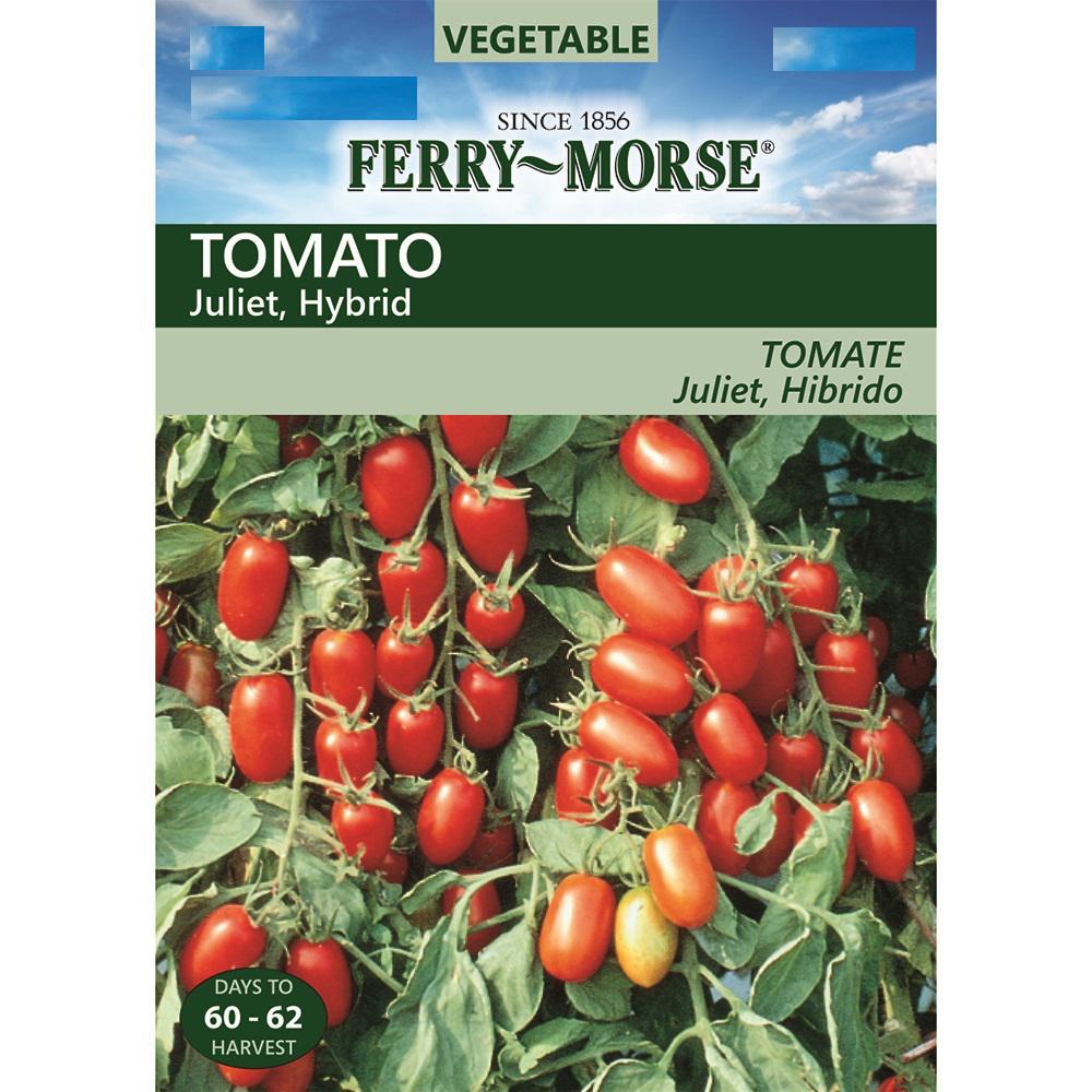 Fullsize Of Better Bush Tomato