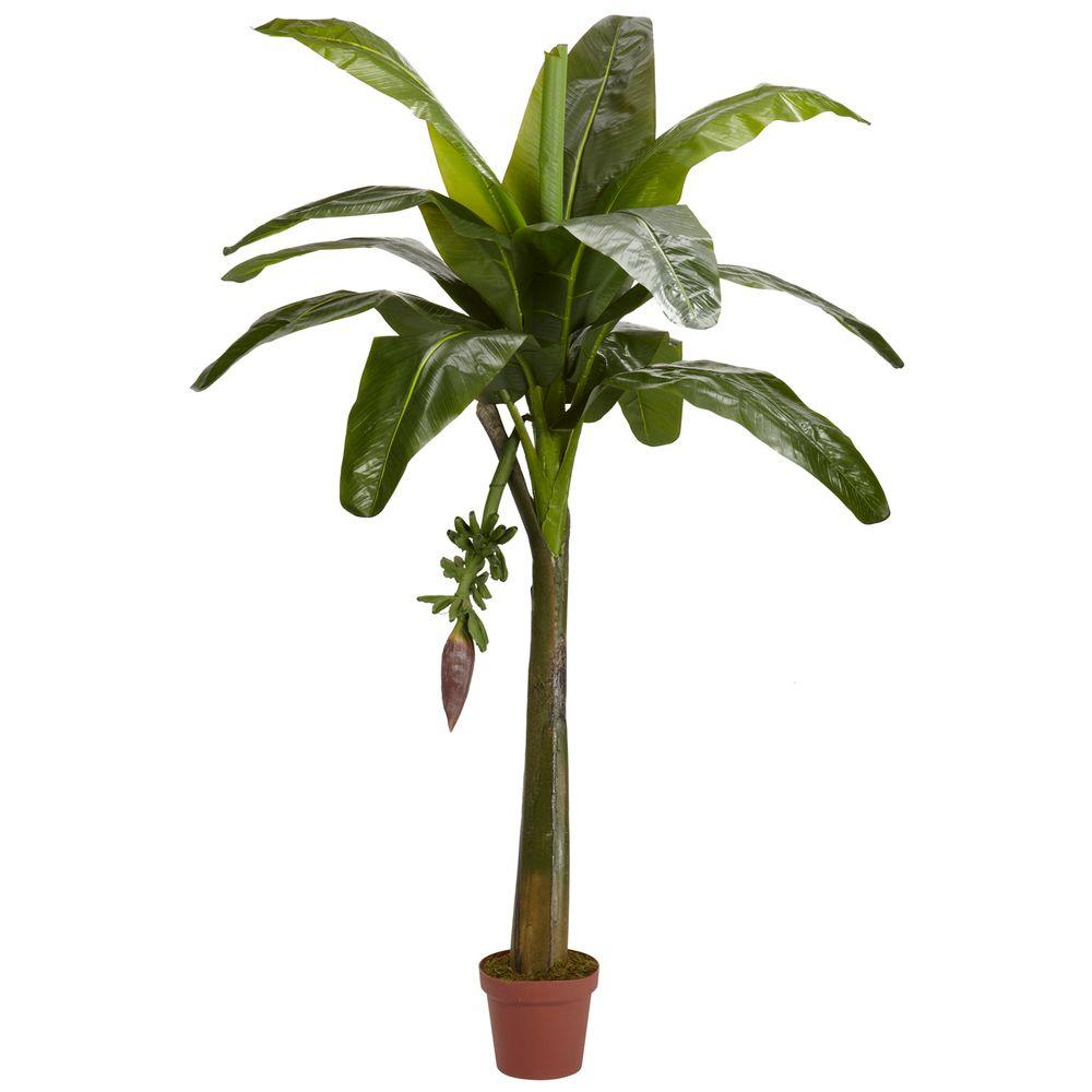 Home Depot Palm Trees Real Touch 6 Ft Green Banana Silk Tree