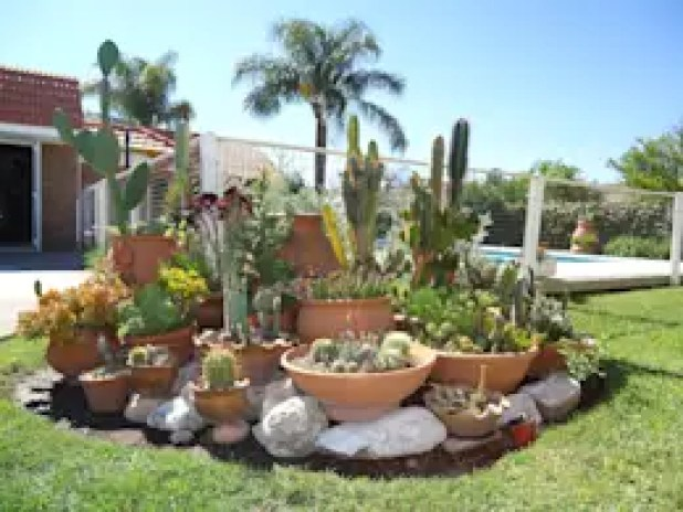 Vườn by milena oitana