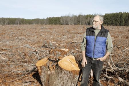 2012-11-05-biomassbenzie.png
