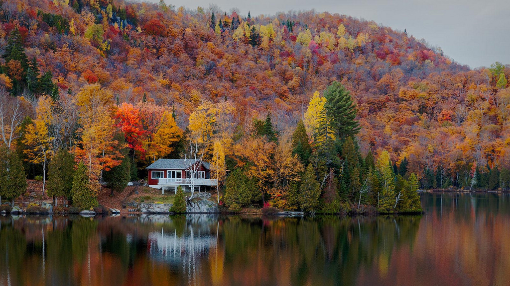 Late Fall Wallpaper Nature 5 Perfect Places To Watch The Fall Colours In Canada