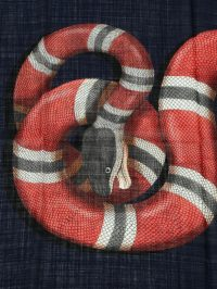 Snake print wool scarf by Gucci - scarves   iKRIX