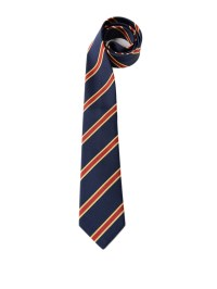 Striped blue silk cotton tie by Gucci - ties & bow ties ...