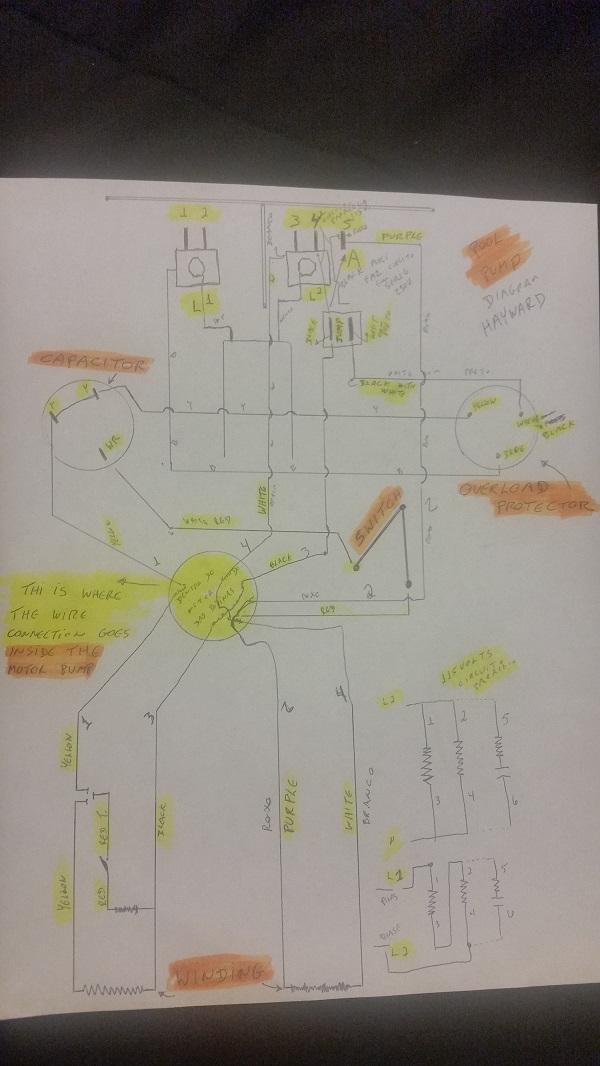 drawing hayward pool pump diagram, understand overload protector