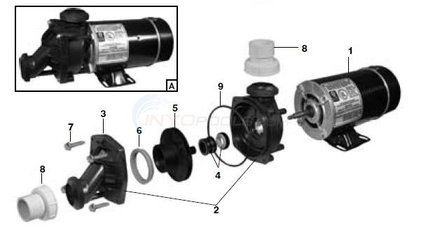 Jacuzzi Pool Pump Parts Diagram Jacuzzi J Series Parts - Inyopools.com