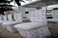 Tiffany Chairs All Types Gold.crystal Clear,wooden Chairs ...