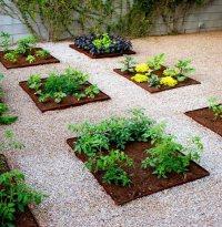 Garden Design - Tucson, AZ - Photo Gallery - Landscaping ...