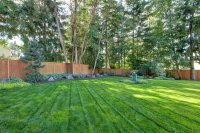 Hydroseeding a Lawn - Landscaping Network