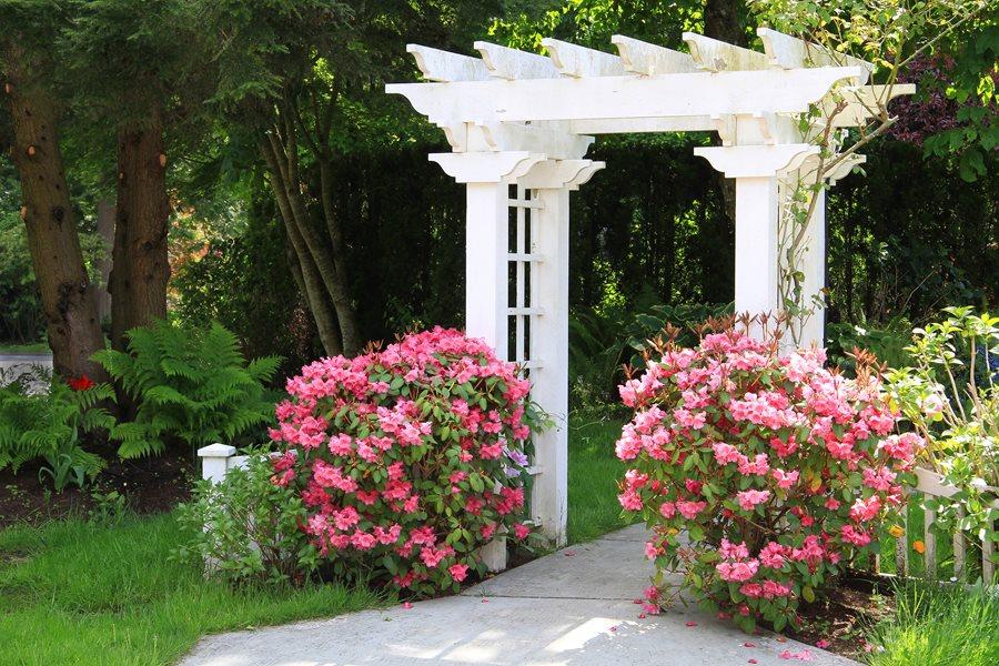 Garden Arbor Tips - Landscaping Network - garden arbor plans designs