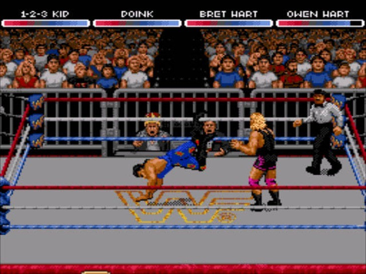 Raw 1994 game