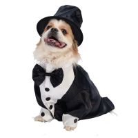 PET SMALL DOG NOVELTY FUNNY HALLOWEEN ANIMAL DRESS UP ...