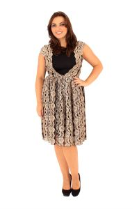 New Womens Plus Size Lace Detail Evening Skater Dress 18 ...