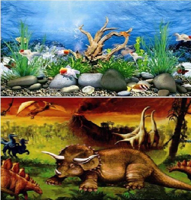 Sided Aquarium Background Backdrop Fish Tank Reptile Vivarium Marine