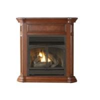 Shop Cedar Ridge Hearth 43.75-in Dual-Burner Vent-Free ...