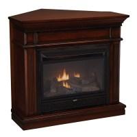 Shop Cedar Ridge Hearth 42-in Dual-Burner Vent-Free Auburn ...