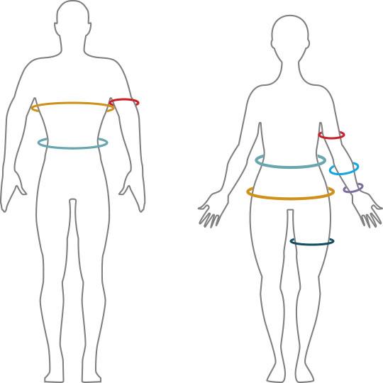 Measurements/Body Measurements TLSSlim