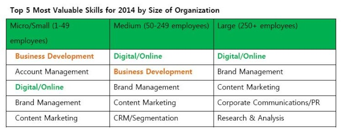 The most valuable skill sets for a marketing career in 2014