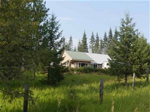 Photo of 966 Bashaw Road, Orofino, ID 83544 (MLS # 135354)