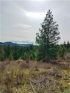 Photo of TBD Red Willow Rd, Kendrick, ID 83537 (MLS # 135381)