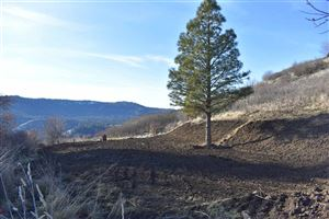 Photo of tbd River Road, Lenore, ID 83541 (MLS # 136408)