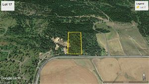 Photo of tbd Lot 17 Ceres Drive, Lenore, ID 83541 (MLS # 136463)