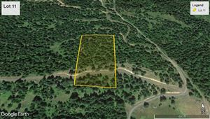 Photo of tbd Lot 11 Bland Road, Lenore, ID 83541 (MLS # 136470)