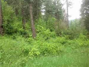 Photo of Parcel A Huckleberry Butte, Orofino, ID 83544 (MLS # 135576)