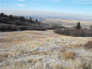Photo of 1 Homestead Loop, Waha, ID 83501 (MLS # 133695)