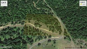 Photo of tbd Ceres Dr Lot 5, Lenore, ID 83541 (MLS # 135709)