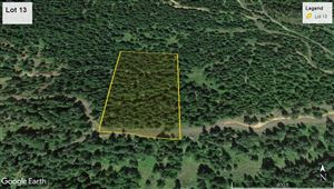 Photo of tbd Bland Rd Lot 13, Lenore, ID 83541 (MLS # 135722)